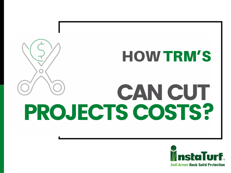 How TRM's Can Cut Projects Costs?