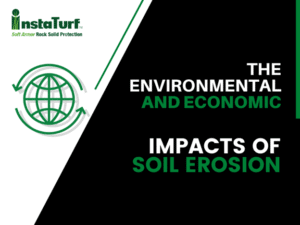 The Environmental and Economic Impacts of Soil Erosion